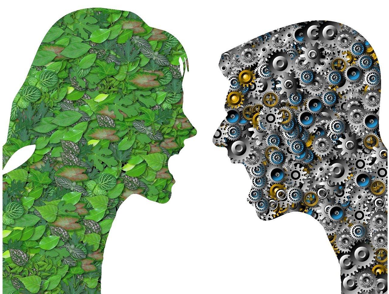 référencement naturel et écologie